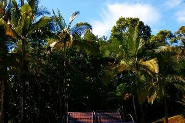 Guabiruba se torna destino de ecoturismo durante pandemia