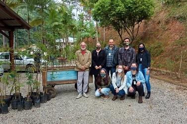 Mais de 40 árvores nativas são plantadas em fazenda do bairro Limeira