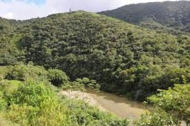 ACIBr reúne lideranças de Brusque e região para discutir sobre barragem de Botuverá