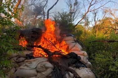 Paraguai 'erradica' maconha e prejuízo ao tráfico chega a R$ 40 milhões