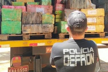 Polícia Civil realiza a incineração de 15 toneladas de drogas em Dourados