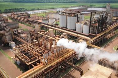 Usina São Fernando é colocada à venda pela terceira vez