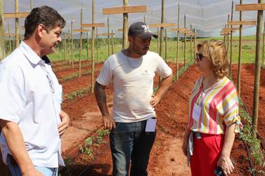 Dia de Campo apresenta novidades para o agricultor local