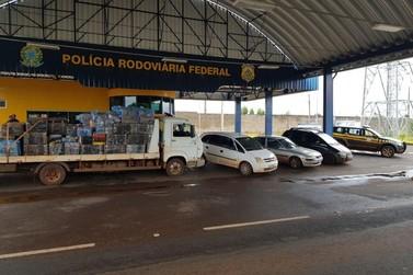 PRF estoura depósito de contrabandistas em aldeia indígena em Terra Roxa