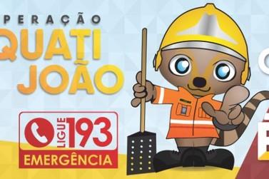 Conheça o mascote de prevenção a incêndios ambientais, o Quati João