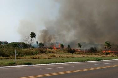 Incêndio forte se alastra na PR-323 entre a Exposição e  Posto Cruzeirão; Vídeo