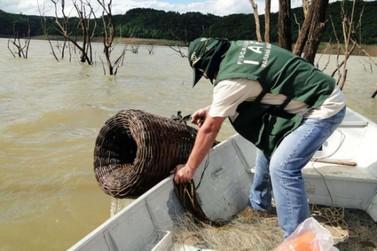 Espécies de peixes nativos não podem ser pescadas até o final do mês que vem