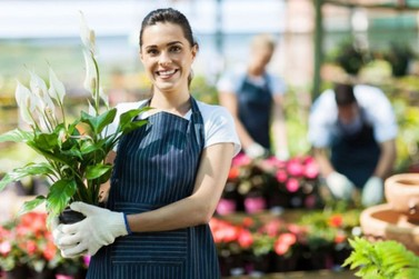 Seis dicas para os pequenos negócios que ainda estão atendendo ao público