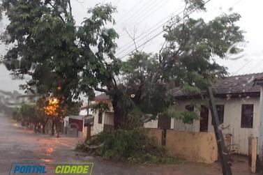 Temporal deixa rastro de destruição em Cruzeiro do Oeste