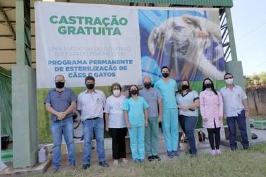 Programa de castração gratuita encerra trabalhos em Cruzeiro do Oeste
