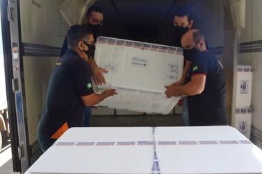 Paraná vai receber novo lote com 649,4 mil doses de vacina contra Covid-19