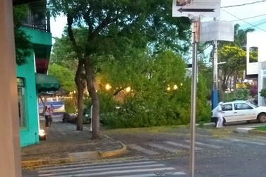 Chuva com ventos fortes causa estragos em Douradina