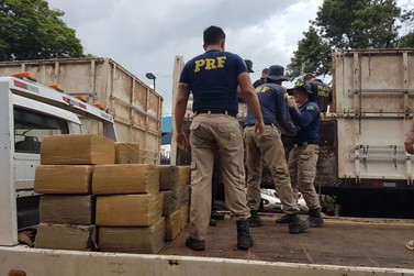 Maior apreensão de drogas no Paraná registrada pela PRF foi em Alto Paraíso