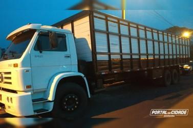 Polícia Militar de Douradina recupera caminhão furtado em Cruzeiro do Oeste