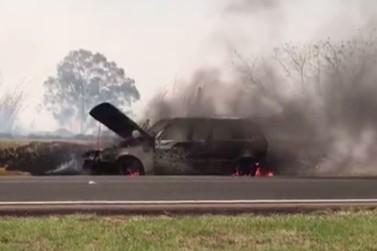 Carro é destruído por fogo na BR-376, em Alto Paraná