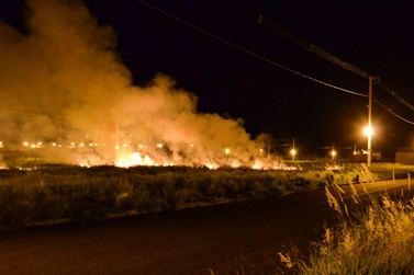 IAP alerta douradinenses que atear fogo em terreno baldio é crime