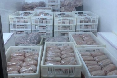 Suspeitos de roubar van carregada com peixes são presos em Cruzeiro do Oeste