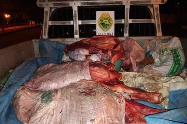Trio é preso após abater boi e furtar carne em Santa Isabel do Ivaí