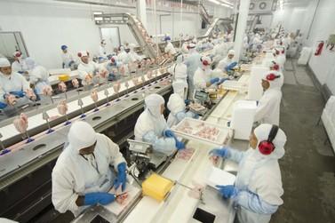C.Vale faz fusão e arrenda abatedouro da Averama:1800 empregos podem ser gerados