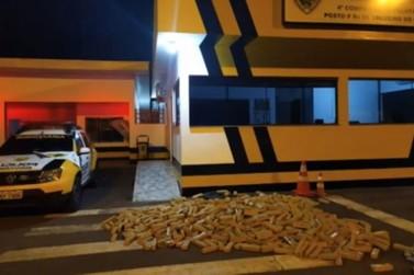 Mais de meia tonelada de maconha é encontrada em caminhão tombado em Ivaté