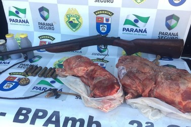 Polícia Ambiental apreende carne de Tatu e espingarda em Douradina