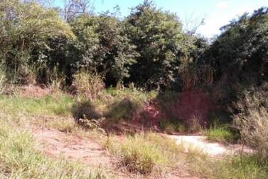 Polícia Civil encontra corpo de mulher enterrado na Estrada Moema, em Umuarama