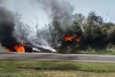 Carro pega fogo e chamas se alastram pela vegetação na BR-376, em Alto Paraná