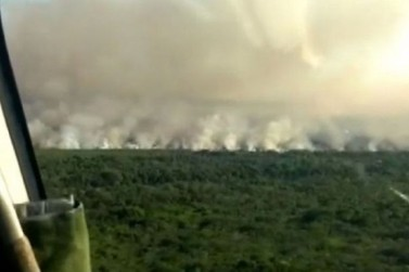 Queimada já consumiu 370 hectares do Parque Nacional de Ilha Grande