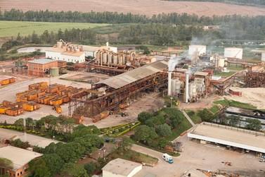 Usina Santa Terezinha de Ivaté abre vagas de emprego para a safra 2021
