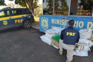 PRF apreende mais de 300 quilos de maconha na estrada Boiadeira, em Alto Paraíso