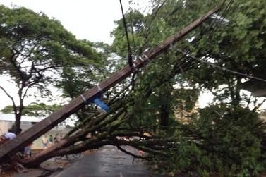 Chuva e vento forte causam estragos em Cruzeiro do Oeste e região