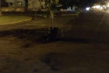Moradores usam bananeira para sinalizar buraco no meio da rua em Ivaté