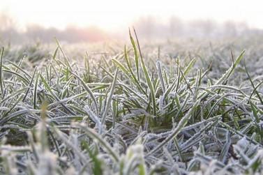 Frio deve provocar geada em Douradina nesta quarta e quinta