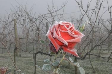 Inverno será mais rigoroso e com menos chuva