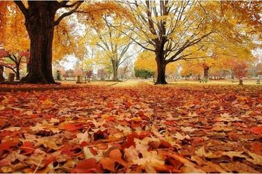 Outono começou Hoje