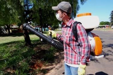Icaraíma decreta epidemia de dengue