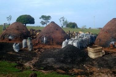 Carvoarias de Douradina e Rondon são multadas por falta de licença ambiental