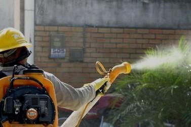Icaraíma tem 17 casos confirmados de dengue
