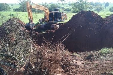 Policia Ambiental flagra derrubada ilegal de árvores nativas em Querência