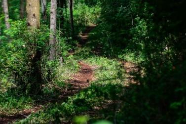 Cataratas Trail Run acontece em junho nas trilhas no entorno do Parque Nacional