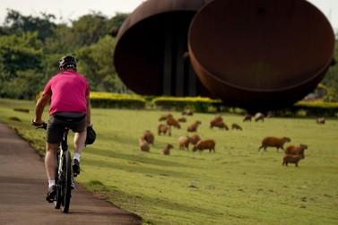 Itaipu terá passeio para a comunidade no último domingo de cada mês