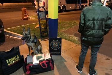 Polícia Federal apreende maconha com menor de 15 anos na BR-277