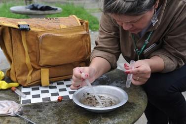 Vistorias em imóveis para combate à dengue são reforçadas pelo CCZ