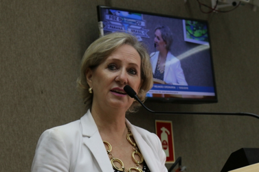 Com parecer contrário, projeto de lei da 'Ficha Limpa' municipal é arquivado