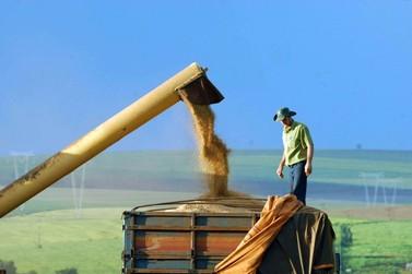 MAPA atende a pedido de reforço na área de importação e exportação agropecuária