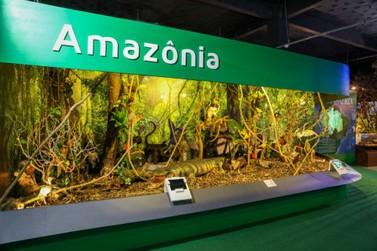 Exposição Itaipu Natureza tem preço promocional em seu último mês em cartaz