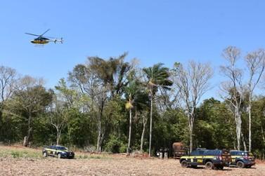 Com ajuda de helicóptero, polícia encontra caminhão com cigarro em meio à mata