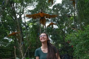 Parque das Aves bate recorde histórico com mais de 119 mil visitantes em julho