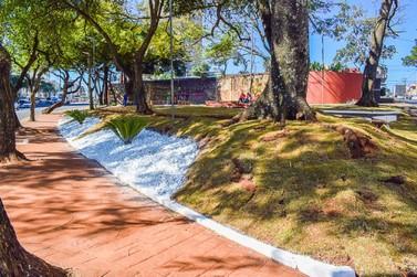 Praça Naipi ganha novo visual com paisagismo e iluminação de LED
