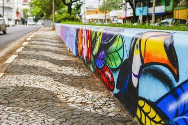 Canteiros da Avenida JK recebem desenhos de animais do Parque Nacional do Iguaçu